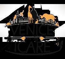 Venezia: ICARE 2017