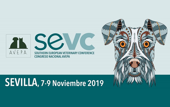 SEVC 2019 - Sevilla, España