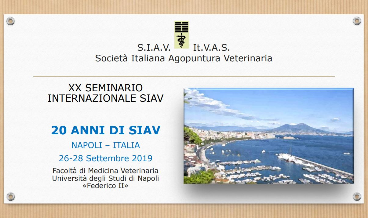 XXe Séminaire International SIAV - Naples
