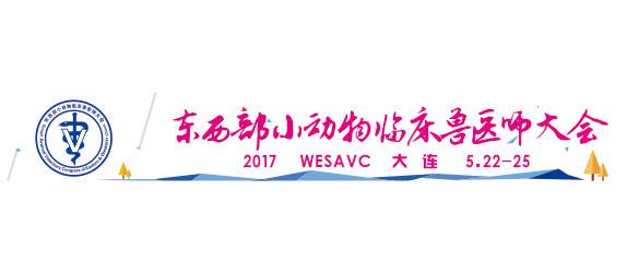 Cina: WESAVC 2017