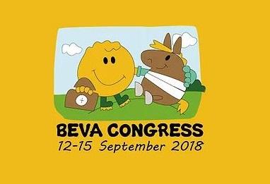 BEVA Congress 2018