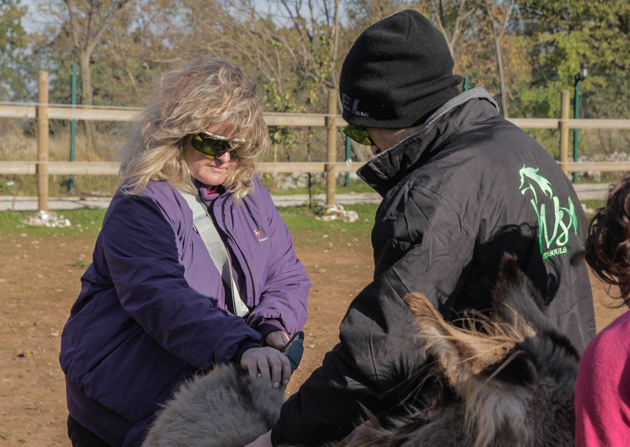 Cristina Murray - veterinarian for equines
