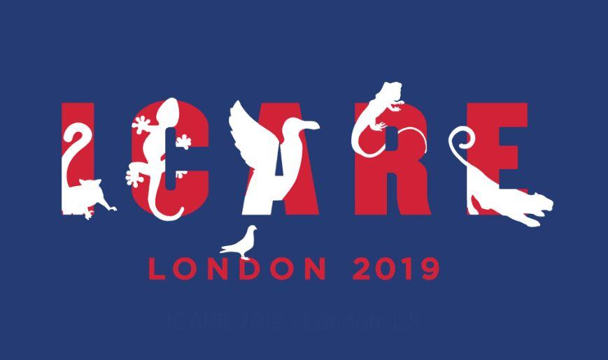 ICARE 2019 - Londra, UK