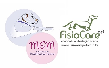 Doppio seminario sulla riabilitazione e MLS® - San Paolo, Brasile