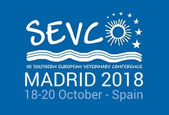 SEVC 2018 - Madrid, Spagna
