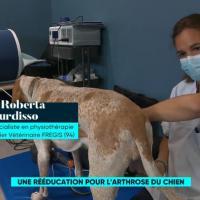 France5 | Le Mag de la Santé | Roberta Burdisso DVM