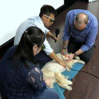 Caso pratico di trattamento con la Laserterapia MLS