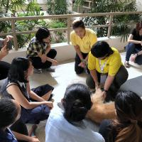 KUVIC 2019 (Hua Hin, Thailand) - Hands-On-Sitzung