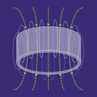 Magnetfeldtherapie PMT Qs in Tiermedizin