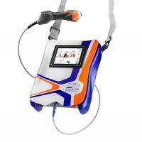 Mphi Vet Orange   Thérapie Laser MLS