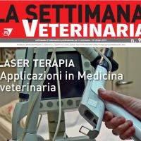 La settimana Veterinaria: intervista al dr. Squarzoni