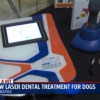 FOX40 | MLS® per la cura dentale degli animali da compagnia