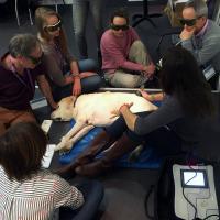 Trattamento laserterapia MLS