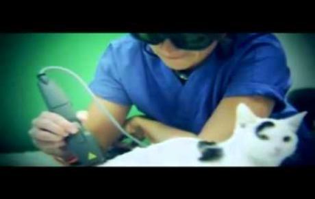 Embedded thumbnail for Laserterapia MLS® - spot