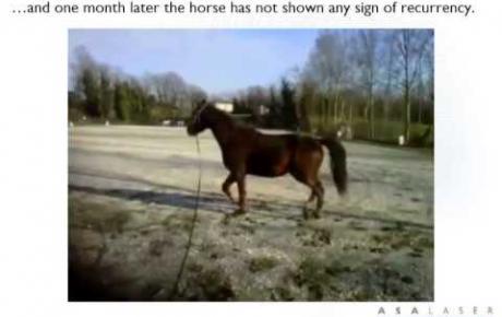 Embedded thumbnail for MLS® zur Behandlung einer Hufprellung bei einem barfüßigen Pferd