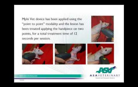 Embedded thumbnail for Nacktratte mit Hautverletzung